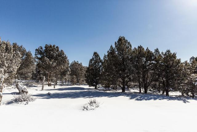 30 Acres Near Mt Carmel, Outside Washington County, UT 84755 (MLS #19-201466) :: Diamond Group