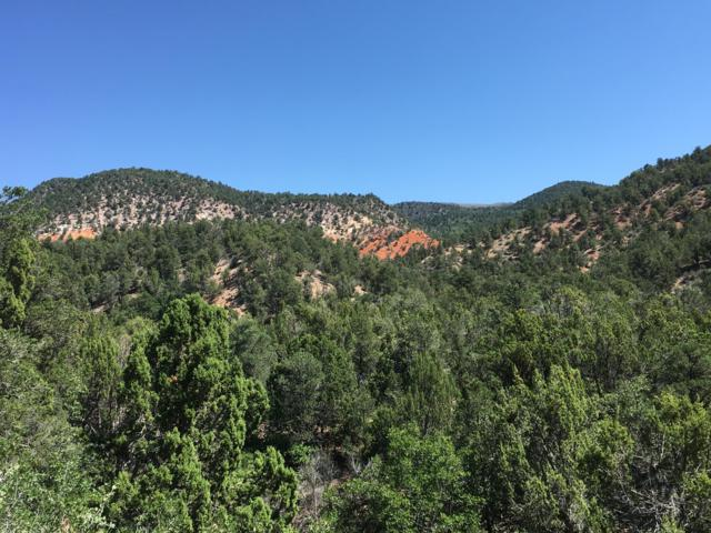 520 acres Forest Rd 029 Near New Harmony, Cedar City, UT 84720 (MLS #19-201534) :: The Real Estate Collective