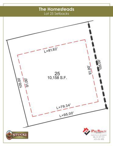 4789 S Homestead Way Lot 25, Washington, UT 84780 (MLS #19-201928) :: Red Stone Realty Team
