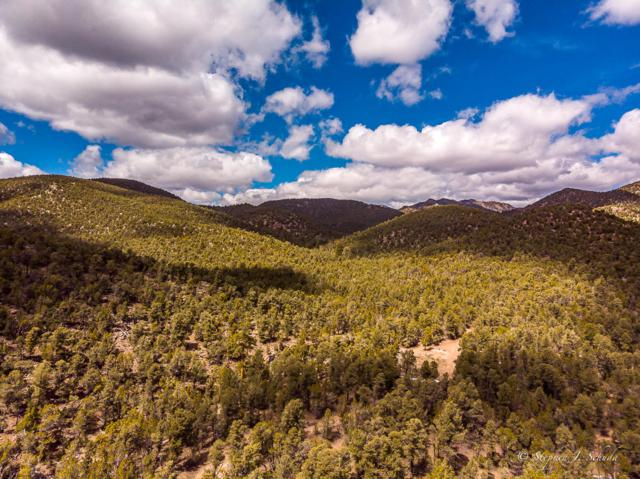 667 Acres, Modena, UT 84753 (MLS #19-203015) :: The Real Estate Collective