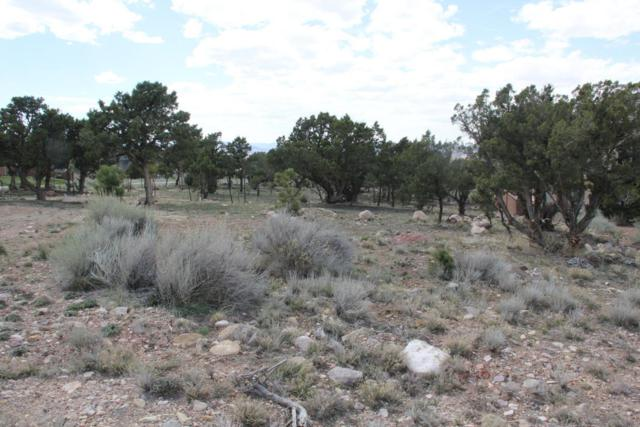 2181 N Rosewood Ln Lot #3, Cedar City, UT 84721 (MLS #19-203593) :: The Real Estate Collective