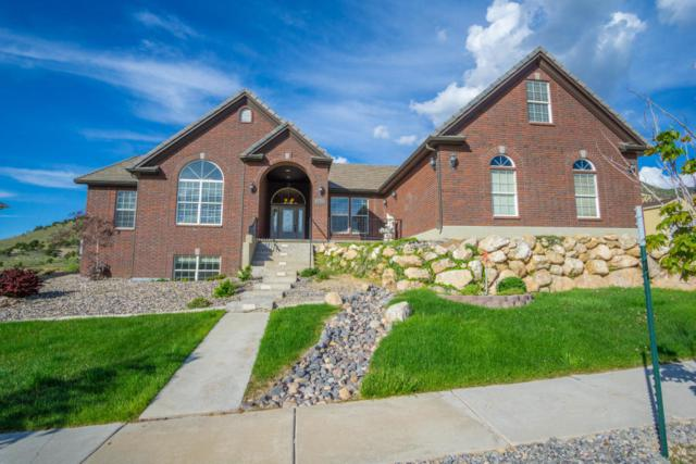 455 E Hillview Dr, Cedar City, UT 84721 (MLS #19-203816) :: Red Stone Realty Team