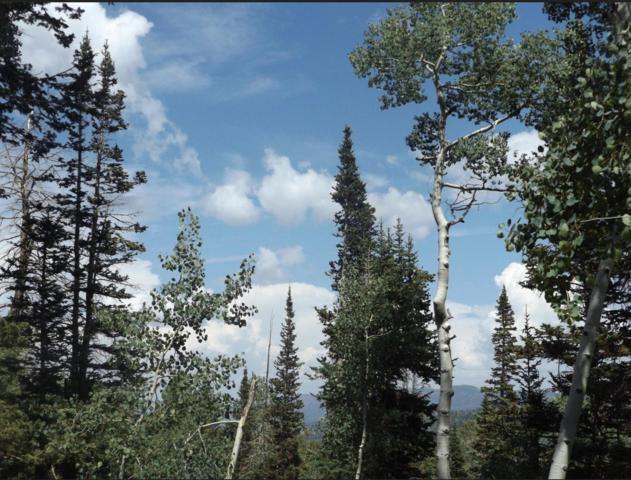 449 W Ski View Lot 3, Blk B Un, Brian Head, UT 84719 (#19-204903) :: Red Sign Team