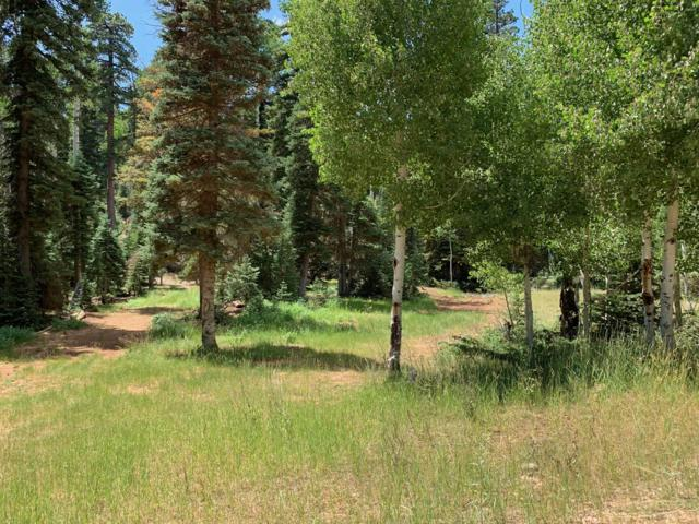 865 W Bear Track, Duck Creek, UT 84762 (MLS #19-206004) :: Remax First Realty