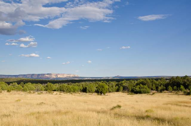 Buffalo Ridge Rd. #4, Mt. Carmel, UT 84755 (MLS #19-207094) :: Red Stone Realty Team