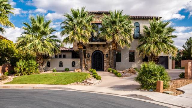 1295 S Fuente Cir, St George, UT 84790 (MLS #19-207664) :: Remax First Realty