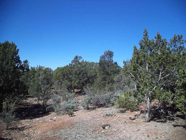 61 N Sundance Kid Trail, Central, UT 84722 (MLS #19-208111) :: Platinum Real Estate Professionals PLLC
