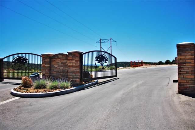2649 W Carmel Estates Dr, Cedar City, UT 84720 (MLS #19-208326) :: John Hook Team