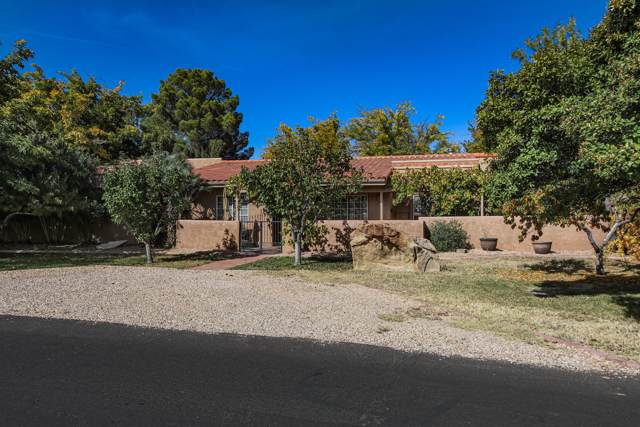 785 E Larkspur Rd, St George, UT 84790 (MLS #19-208339) :: Remax First Realty