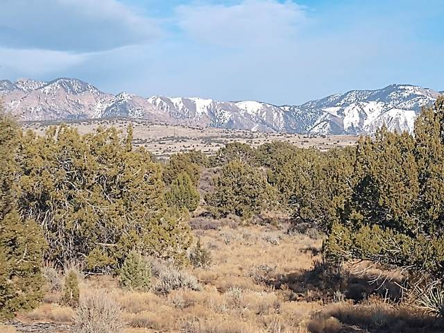 167 Peregrine Cir #1, Dammeron Valley, UT 84783 (MLS #20-211564) :: The Real Estate Collective