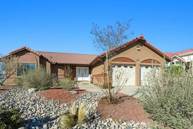 393 Vermillion Ave, St George, UT 84790 (MLS #20-212542) :: The Real Estate Collective