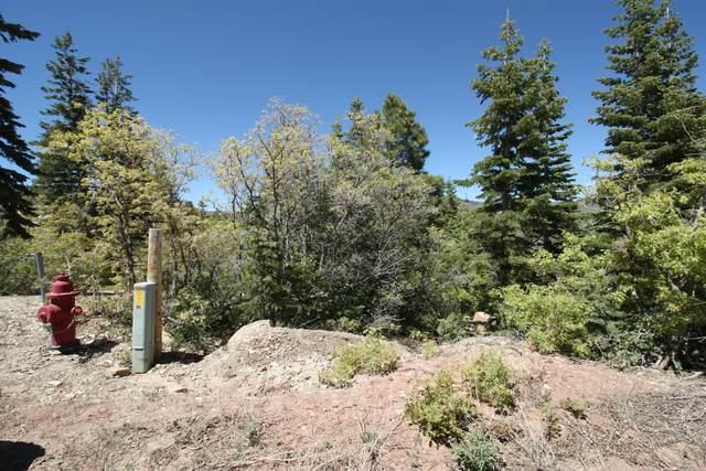 102 Grand View Trail, Virgin, UT 84779 (MLS #20-213779) :: Team SURGE @ KW St. George