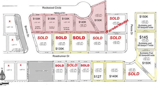 Roadrunner Ridge Dr #31, Washington, UT 84780 (MLS #20-214587) :: Red Stone Realty Team