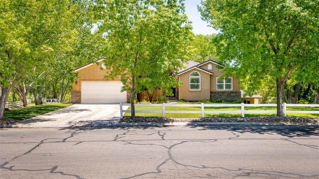 1497 Cholla, Toquerville, UT 84774 (MLS #20-214688) :: Red Stone Realty Team