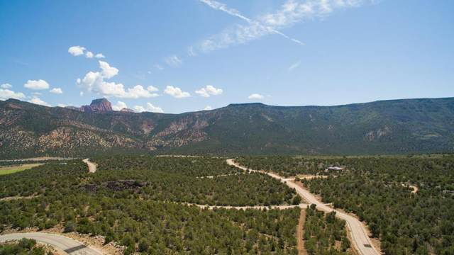 Kolob Ranch Estates #295, New Harmony, UT 84757 (MLS #20-214781) :: John Hook Team