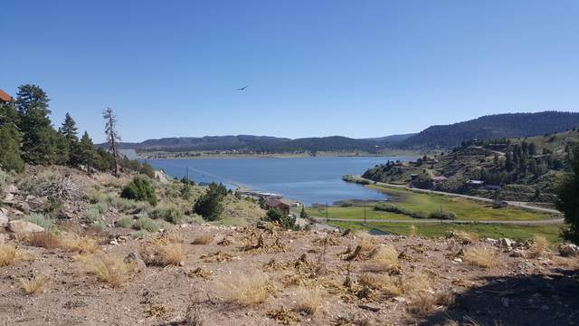 327 N Scenic Dr, Panguitch, UT 84759 (MLS #20-215532) :: Red Stone Realty Team