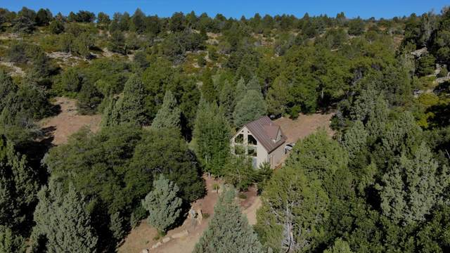 1 N Fork County Rd, Orderville, UT 84758 (MLS #20-215563) :: Red Stone Realty Team