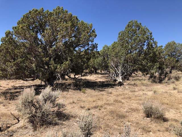 Lot 1 Blk Bt, Cedar City, UT 84721 (MLS #20-215795) :: Red Stone Realty Team