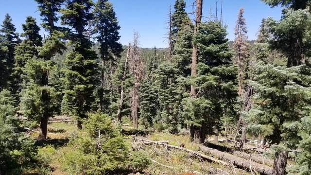 955 W Big Horn Cir, Duck Creek, UT 84762 (MLS #20-215832) :: Diamond Group