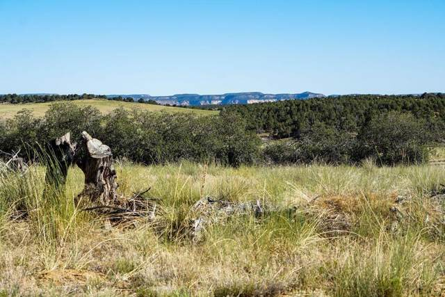 All Of Lot 25 Peaches, Phase 1, Mt. Carmel, UT 84755 (MLS #20-215897) :: eXp Realty