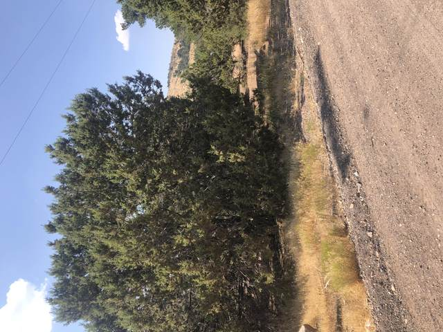 Lot 8 Pinion Circle #8, Central, UT 84722 (MLS #20-216383) :: Team SURGE @ KW St. George