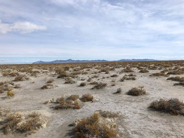 10 AC Lucin Ghost Town Area, Outside Washington County, UT 99999 (MLS #20-217846) :: Red Stone Realty Team