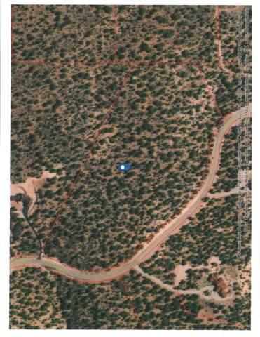 Lot 40 Harmony Mountain Ranch, Kanarraville, UT 84742 (MLS #20-217925) :: John Hook Team