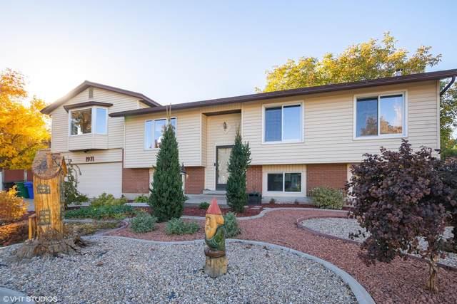 1971 W Running Springs Drive, West Jordan, UT 84084 (MLS #20-217934) :: Staheli Real Estate Group LLC