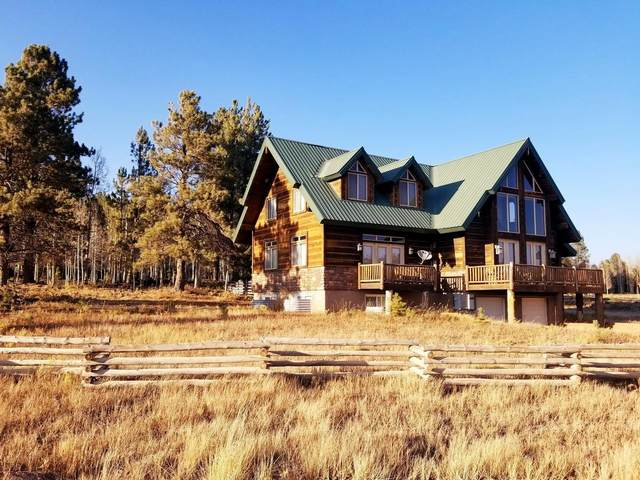 1015 E Lost Creek Rd, Duck Creek, UT 84762 (MLS #20-218078) :: Staheli Real Estate Group LLC