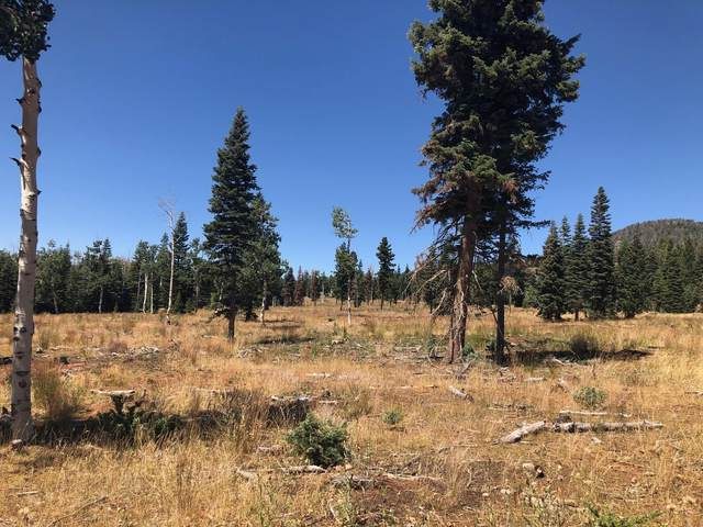 259.83 Ac North Fork Below Navajo La, Duck Creek, UT 84762 (MLS #20-218088) :: Staheli Real Estate Group LLC