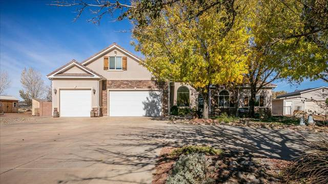 1436 W Opal Court, St George, UT 84770 (MLS #20-218480) :: Red Stone Realty Team