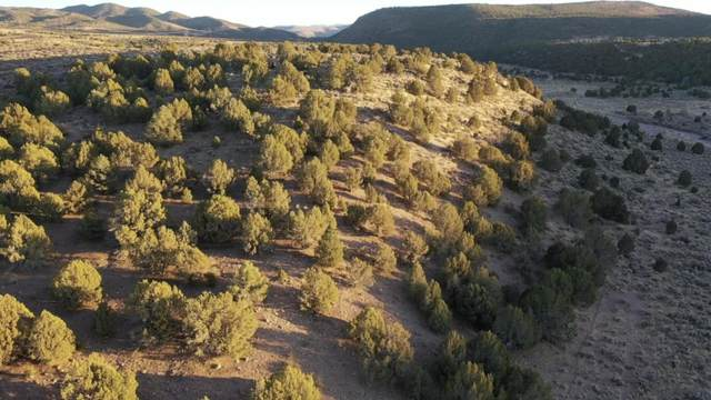 40 Ac N Holt Canyon Rd, Enterprise, UT 84725 (MLS #20-218669) :: Kirkland Real Estate | Red Rock Real Estate
