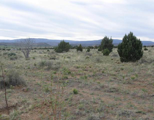 1780 S Blue Sky Lane #1, Escalante, UT 84726 (MLS #21-219277) :: John Hook Team