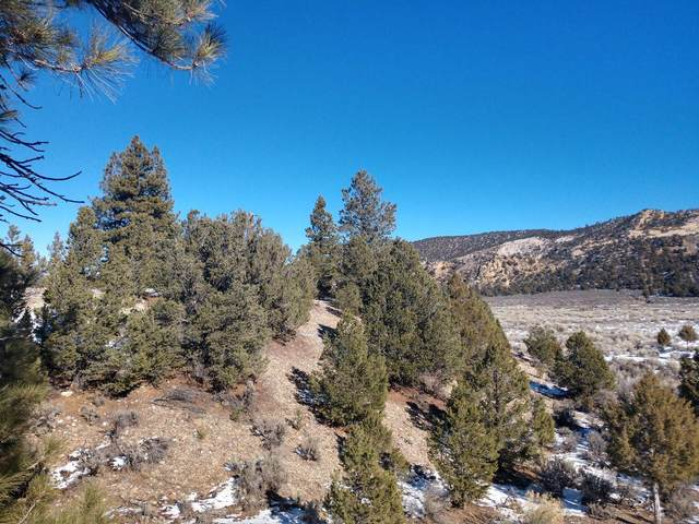 MM 46.3 Hwy 12, Escalante, UT 84726 (MLS #21-219334) :: The Real Estate Collective