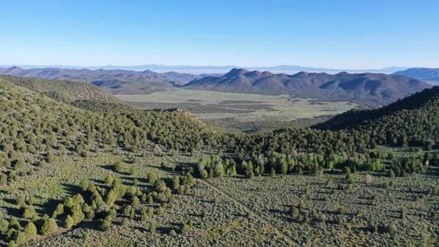 Paradise Springs Ranch East Of Town Of, Pine Valley, UT 84781 (MLS #21-219783) :: Team SURGE @ KW St. George