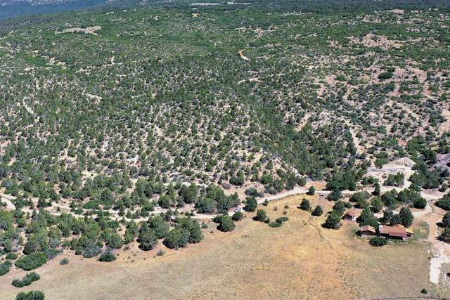 All Of Lot 15 Peaches, Mt. Carmel, UT 84755 (MLS #21-220577) :: eXp Realty