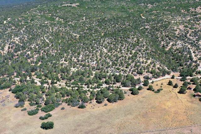 All Of Lot 16 Peaches, Mt. Carmel, UT 84755 (MLS #21-220579) :: eXp Realty
