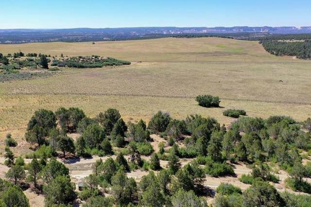 All Of Lot 22 Peaches, Mt. Carmel, UT 84755 (MLS #21-220580) :: eXp Realty