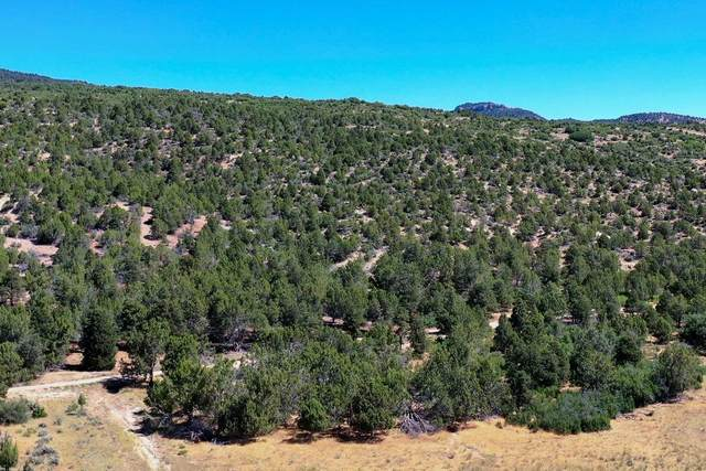All Of Lot 19 Peaches, Mt. Carmel, UT 84755 (MLS #21-220581) :: eXp Realty