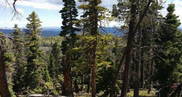 5615 W Mountain Lion Dr #17, Duck Creek, UT 84762 (MLS #21-220660) :: eXp Realty