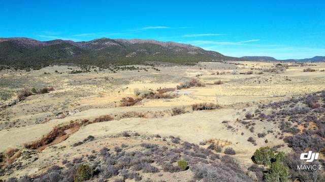 Mountain Meadow Drive, Central, UT 84722 (MLS #21-220696) :: John Hook Team