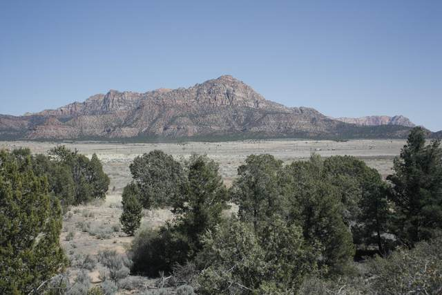 199 N Coyote Rd, Hurricane, UT 84737 (MLS #21-221559) :: eXp Realty