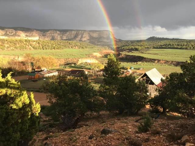 Cow Path #282, Alton, UT 84710 (MLS #21-221921) :: The Real Estate Collective