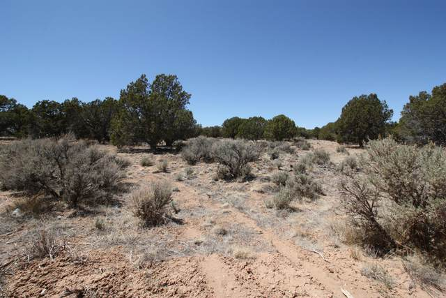 5873 N 4400 W Lot 4, Cedar City, UT 84721 (MLS #21-222302) :: Hamilton Homes of Red Rock Real Estate & ERA Brokers Consolidated