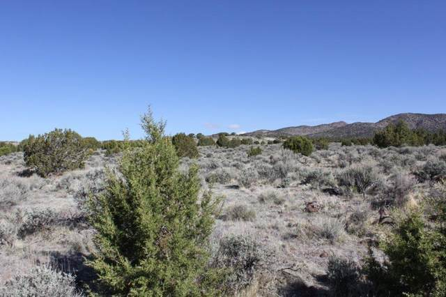 320 Ac Near Lund, Beryl, UT 84714 (MLS #21-222427) :: Sycamore Lane Realty Co.