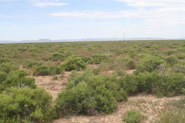 Lot 4 Blk N Broken Sprur Ranch 4 & 6, Outside Washington County, UT 84756 (MLS #21-222429) :: Sycamore Lane Realty Co.