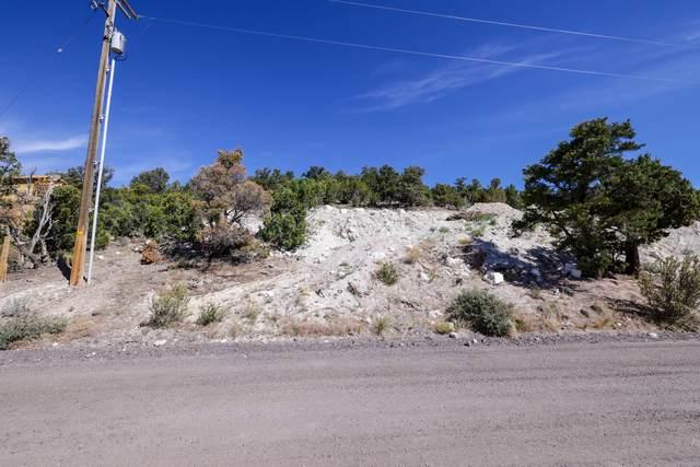 53 N Sundance Kid Trail, Central, UT 84722 (MLS #21-223421) :: Diamond Group