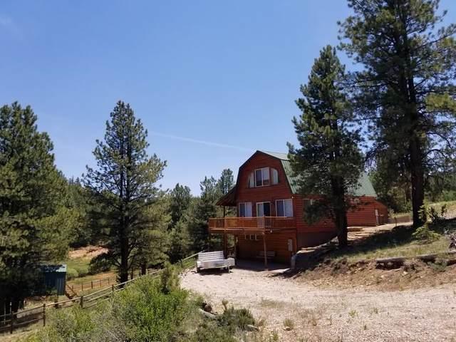 190 N Tonto Trail, Duck Creek, UT 84762 (MLS #21-223593) :: Julia DeMarce The Dream Team