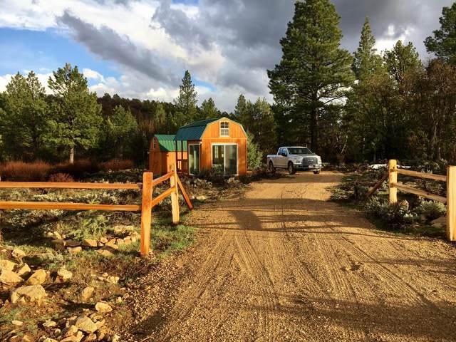 E Zion National Park, 42 Beaver Road, Mt. Carmel, UT 84755 (MLS #21-224268) :: Selldixie