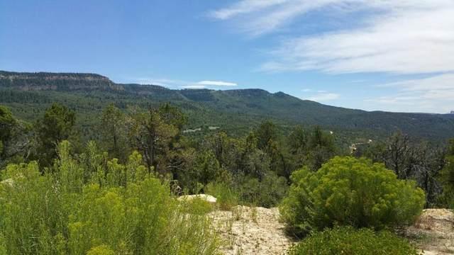.70  acres Zion Hunting Estates 13-6, Orderville, UT 84758 (MLS #21-224740) :: John Hook Team